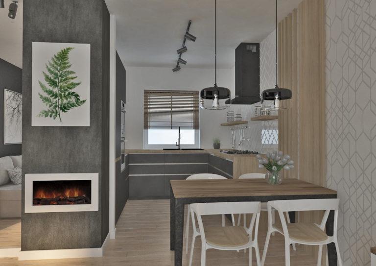 Dom w Zimokwiatach  - kuchnia